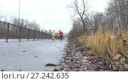 Купить «Nordic walking for elderly women outdoor - two senior ladies have training outdoor, rear view», видеоролик № 27242635, снято 25 мая 2019 г. (c) Константин Шишкин / Фотобанк Лори