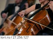 Купить «Музыканты симфонического оркестра играют на виолончели во время концерта классической музыки», фото № 27256127, снято 1 декабря 2017 г. (c) Николай Винокуров / Фотобанк Лори