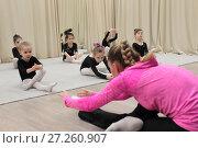 Купить «Маленькие гимнастки выполняют упражнение с тренером», эксклюзивное фото № 27260907, снято 30 ноября 2017 г. (c) Дмитрий Неумоин / Фотобанк Лори