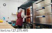 Купить «The cook puts the pies in the oven in the bakery», видеоролик № 27275495, снято 17 июля 2018 г. (c) Константин Шишкин / Фотобанк Лори