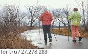 Купить «Healthy lifestyle for elderly women - nordic walking in autumn park, rear view», фото № 27278283, снято 24 июня 2019 г. (c) Константин Шишкин / Фотобанк Лори