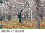Купить «Гастарбайтер подметает листву в парке с помощью ранцевой воздуходувки», фото № 27280131, снято 29 ноября 2017 г. (c) Михаил Старшов / Фотобанк Лори