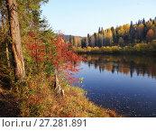 Купить «Осень на берегу Усьвы. Пермский край.», фото № 27281891, снято 25 сентября 2014 г. (c) Сергей Афанасьев / Фотобанк Лори