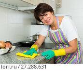 Купить «mature woman cleaning», фото № 27288631, снято 27 сентября 2018 г. (c) Яков Филимонов / Фотобанк Лори