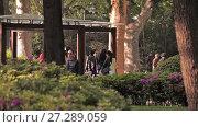 Купить «City park Shanghai», видеоролик № 27289059, снято 13 декабря 2017 г. (c) Балдина Алиса / Фотобанк Лори