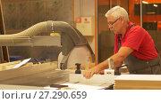 Купить «carpenter with panel saw and fibreboard at factory», видеоролик № 27290659, снято 18 ноября 2017 г. (c) Syda Productions / Фотобанк Лори