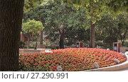 Купить «Chinese city of Shanghai», видеоролик № 27290991, снято 9 декабря 2017 г. (c) Балдина Алиса / Фотобанк Лори