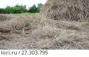 dry hay and haystack outdoors. Стоковое видео, видеограф Володина Ольга / Фотобанк Лори