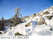 Купить «Winter landscape. Snowy forest at mountains, Russia, Ural.», фото № 27304543, снято 10 ноября 2017 г. (c) Сергей Дорошенко / Фотобанк Лори