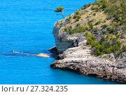Купить «Summer Arch of San Felice, Italy», фото № 27324235, снято 5 июня 2017 г. (c) Юрий Брыкайло / Фотобанк Лори