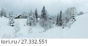Купить «Winter Carpathian Mountains landscape.», фото № 27332551, снято 27 марта 2019 г. (c) Юрий Брыкайло / Фотобанк Лори