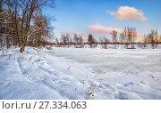 Купить «Замерзший пруд и следы на снегу», фото № 27334063, снято 14 января 2012 г. (c) Baturina Yuliya / Фотобанк Лори