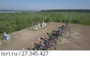 Купить «Группа работающих нефтяных станков качалок», видеоролик № 27345427, снято 13 июня 2017 г. (c) Алексей Кокорин / Фотобанк Лори