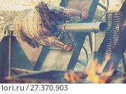 Купить «Whole bull carcass on spit», фото № 27370903, снято 20 марта 2019 г. (c) Яков Филимонов / Фотобанк Лори