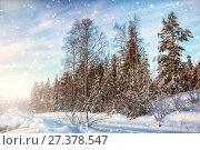 Купить «Сказочный зимний день на севере Карелии. Россия», фото № 27378547, снято 8 января 2018 г. (c) Наталья Осипова / Фотобанк Лори