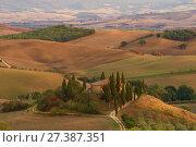 Вилла Бельведер в тосканском утреннем пейзаже. Италия (2017 год). Стоковое фото, фотограф Виктор Карасев / Фотобанк Лори