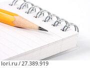 Купить «Блокнот с карандашом на белом фоне», фото № 27389919, снято 22 июня 2010 г. (c) Александр Гаценко / Фотобанк Лори