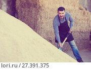 Купить «Happy man standing with metallic spade», фото № 27391375, снято 23 января 2018 г. (c) Яков Филимонов / Фотобанк Лори