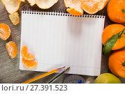 Купить «Notebook surrounded by fruit», фото № 27391523, снято 10 декабря 2018 г. (c) Яков Филимонов / Фотобанк Лори