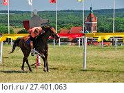 Knights' tournament in Golub-Dobrzyn, Kuyavian-Pomeranian Voviodeship, Poland. Стоковое фото, фотограф Bednarek Dariusz / age Fotostock / Фотобанк Лори