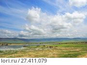 Ngorongoro crater scenery. Tanzania, Africa (2008 год). Стоковое фото, фотограф Знаменский Олег / Фотобанк Лори