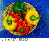 Купить «Close-Up Of Peppers», фото № 27415663, снято 24 октября 2015 г. (c) age Fotostock / Фотобанк Лори