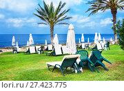 Купить «Paphos, Cyprus - July 20, 2017: Palm beach with empty sunbeds against Constantinou Bros Athena Beach Hotel. The hotel was fully refurbished in the winter of 10/11», фото № 27423775, снято 20 июля 2017 г. (c) Papoyan Irina / Фотобанк Лори