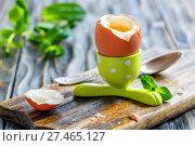 Купить «The soft-boiled egg in a funny green stand», фото № 27465127, снято 8 апреля 2017 г. (c) Марина Сапрунова / Фотобанк Лори
