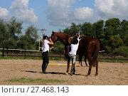 Купить «Молодая девушка на лошади. Конный спорт», эксклюзивное фото № 27468143, снято 17 августа 2013 г. (c) Юрий Морозов / Фотобанк Лори