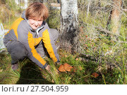 Купить «Lots of mushrooms in the forest», фото № 27504959, снято 16 сентября 2014 г. (c) Argument / Фотобанк Лори