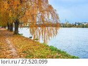Купить «Осеннее настроение в Твери», фото № 27520099, снято 22 октября 2017 г. (c) Baturina Yuliya / Фотобанк Лори