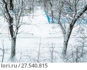 Купить «Зимний вид из окна. Последствия сильного снегопада в Москве», фото № 27540815, снято 31 января 2018 г. (c) Алёшина Оксана / Фотобанк Лори