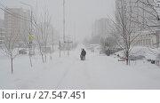 Купить «Moscow, Russia - February 4. 2018. Strong blizzard in city of Zelenograd», видеоролик № 27547451, снято 4 февраля 2018 г. (c) Володина Ольга / Фотобанк Лори