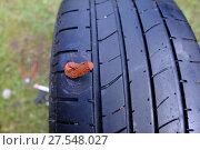 Купить «Ремонтный резиновый жгут установлен в отверстие в шине бескамерного колеса», фото № 27548027, снято 28 мая 2017 г. (c) Анатолий Заводсков / Фотобанк Лори