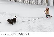 Купить «Девушка гуляет с собакой во время снегопада в Москве», фото № 27550783, снято 5 февраля 2018 г. (c) Валерия Попова / Фотобанк Лори
