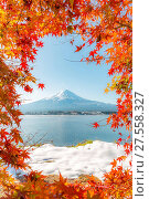 Mt. Fuji in autumn. Стоковое фото, фотограф Zoonar/V.Kiatying-An / easy Fotostock / Фотобанк Лори