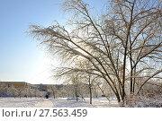 Купить «Заснеженная Москва. Митино после сильного снегопада. Солнечный день», фото № 27563459, снято 6 февраля 2018 г. (c) Валерия Попова / Фотобанк Лори
