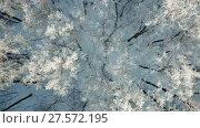 Купить «Aerial view of winter forest with snow and frost», видеоролик № 27572195, снято 11 декабря 2017 г. (c) Михаил Коханчиков / Фотобанк Лори