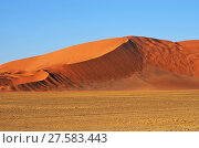 Sossusvlei, Namib Naukluft National Park, Namibia (2016 год). Стоковое фото, фотограф Знаменский Олег / Фотобанк Лори