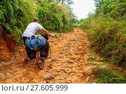 Купить «Cycling through jungle», фото № 27605999, снято 15 ноября 2018 г. (c) easy Fotostock / Фотобанк Лори