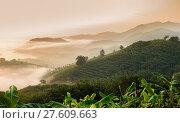 Купить «Sunrise with sea of fog above Mekong river in Nong Khai Province, Thailand», фото № 27609663, снято 23 августа 2019 г. (c) PantherMedia / Фотобанк Лори