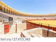 Купить «bullfight arena stadium», фото № 27613343, снято 23 января 2019 г. (c) PantherMedia / Фотобанк Лори