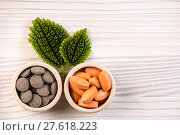 Купить «Homeopathic pills in containers with green leaves», фото № 27618223, снято 18 июля 2019 г. (c) PantherMedia / Фотобанк Лори