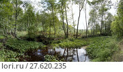Купить «watercourse in the moor at neudorf-platendorf», фото № 27620235, снято 22 июля 2019 г. (c) PantherMedia / Фотобанк Лори
