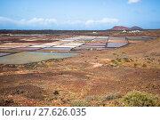 Купить «lanzarote salinas de janubio saltworks colorful canary islands», фото № 27626035, снято 23 марта 2018 г. (c) PantherMedia / Фотобанк Лори