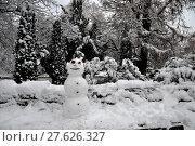 Купить «nature tree winter scenery countryside», фото № 27626327, снято 27 мая 2019 г. (c) PantherMedia / Фотобанк Лори