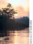 Купить «Early morning in Amazonian rainforest. Lake Cuyabeno», фото № 27636043, снято 19 октября 2019 г. (c) PantherMedia / Фотобанк Лори