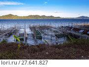 Купить «Fish farm at Lake Tondano», фото № 27641827, снято 26 мая 2019 г. (c) PantherMedia / Фотобанк Лори