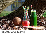 Купить «Green smoothie with spinach, apple and coconat (exterior shot)», фото № 27649975, снято 19 августа 2018 г. (c) easy Fotostock / Фотобанк Лори