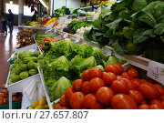 Купить «business architecture work job vegetable», фото № 27657807, снято 26 марта 2019 г. (c) PantherMedia / Фотобанк Лори
